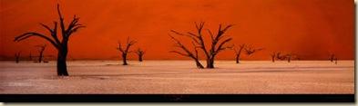 Namibie-Print-C10098297