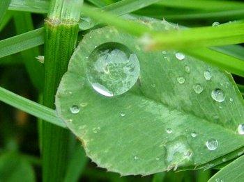 huge-rain-drop