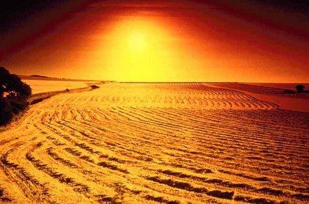 desert1 opt